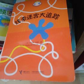 线索迷宫大追踪/杜莱百变创意玩具书