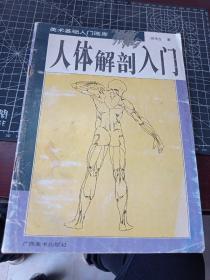人体解剖入门