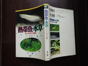 热带鱼水草  日文原版