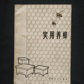 《实用养蜂》李建修编著 吉林人民出版社 私藏 书品如图