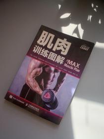 肌肉训练图解