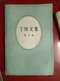 丁玲文集 (第五卷)