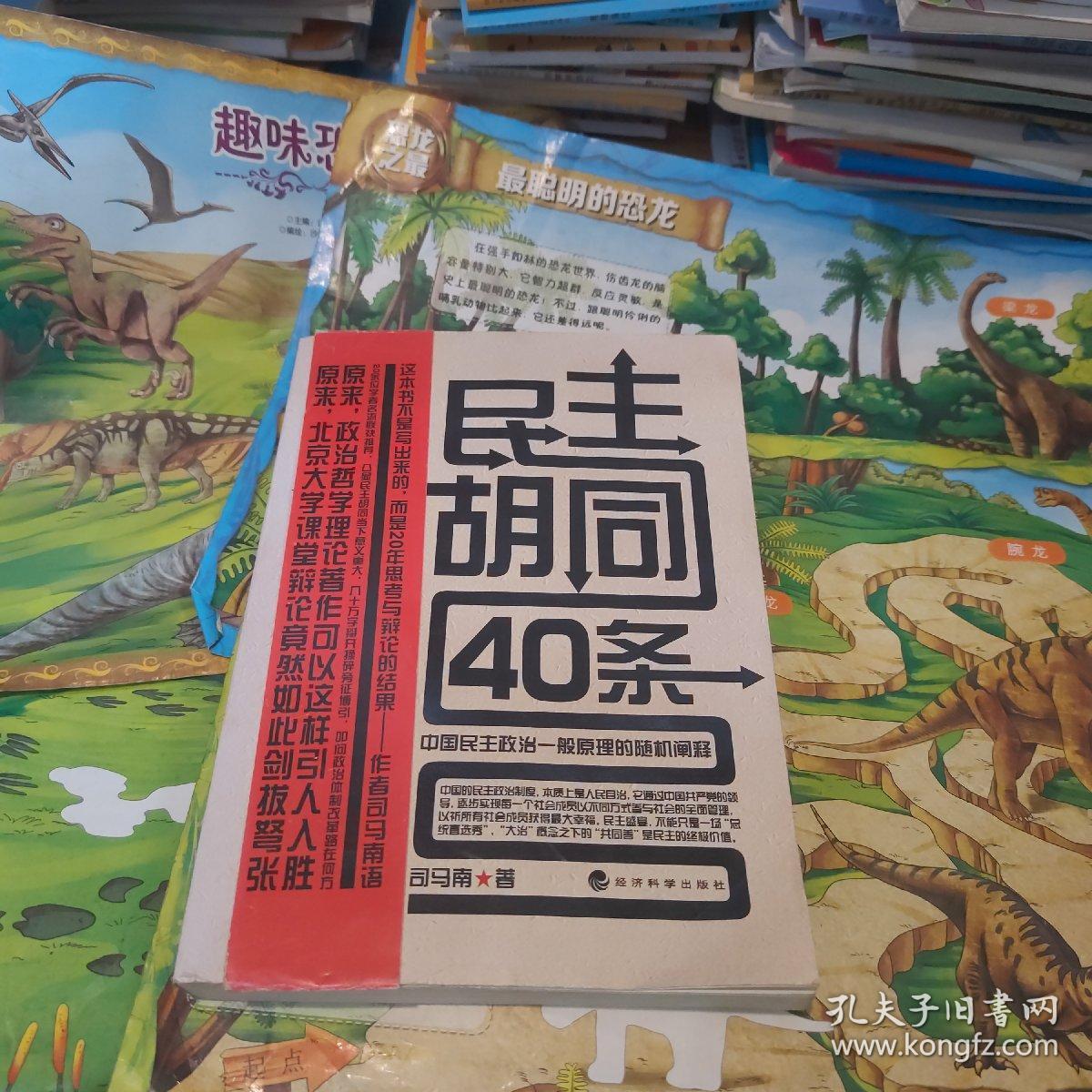 民主胡同40条:中国民主政治一般原理的随机阐释 一版一印