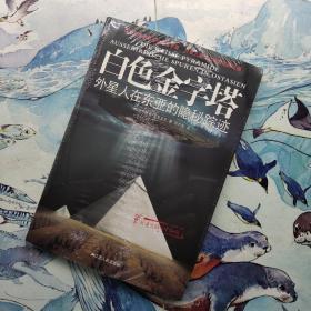 白色金字塔:外星人在东亚的隐秘踪迹