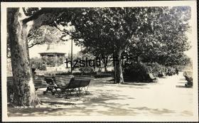 【照片珍藏】民国早期上海外滩公共花园(外滩公园)样貌布局及周边景象,可见著名的音乐亭等。老照片内容较少见,影像清晰、颇为难得