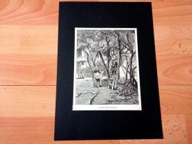 19世纪木刻版画《丰收的果园》(Narcissus,Oranges,and Lemons)-- 后附卡纸30*21厘米,版画纸张18*14厘米