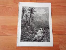 1883年木口木刻版画《桃园般的爱情》(THE TOILET IN THE DESERT)-- 出自19世纪著名法国版画家、雕刻家和插图作家,古斯塔夫·多雷(Gustave Doré,1832-1883)的绘画作品 -- 取材于19世纪初法国著名作家,弗朗索瓦-勒内·夏多布里昂(1768-1848)的代表作《阿达拉》,描绘酋长女儿阿达拉与印第安青年沙克达斯的爱情悲剧 -- 版画纸张31*24厘米