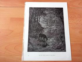 1883年木口木刻版画《顾影自怜》(THE STAG VIEWING HIMSELF IN THE STREAM)-- 出自19世纪著名法国版画家、雕刻家和插图作家,古斯塔夫·多雷(Gustave Doré,1832-1883)的绘画作品 -- 取13世纪意大利诗人,但丁的史诗著作《神曲》-- 版画纸张31*24厘米