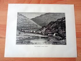 1882年木刻版画《穿越科罗拉多大峡谷》(Eine Karawane in einem