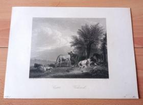 1850年钢版画《牧场》(Cattle)-- 出自荷兰黄金时期动物和人物风景画家,阿德里安·凡·德·维尔德(Adriaen van de Velde,1636-1672)的油画作品 -- 雕刻师:Albert Henry Payne(英国,1812-1902)-- 版画纸张27*20厘米
