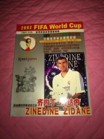2002年韩日世界杯 FIFA 世界杯足球赛超强信纸