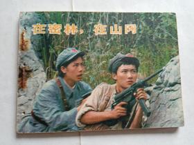 在密林,在山冈  【1984年中国电影出版社一印,打孔书】