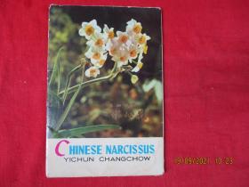 彩色名信片11张全,带套,璋州宜春水仙花,品好如图。