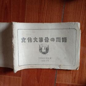 文化大革命的用语 日文汉语对照
