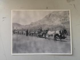 朱醒西旧藏  特殊时代产物 马拉四轮列车 山东淄博博山区交通局 照片一张 有裂开尺寸20/15厘米