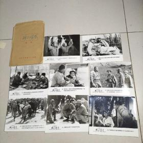 彩色宽银幕故事片 骑士的荣誉 电影剧照一组 8张合售