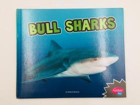 Bull Sharks (All about Sharks) 牛鲨