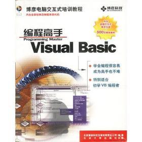 Visual Basic编程高手