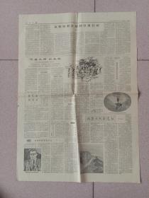 人民日报1962年4月12日第五第六版