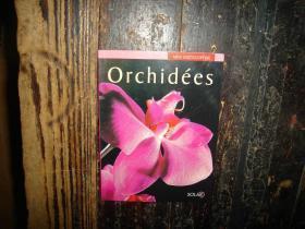 Orchidees,兰花,迷你百科全书,太阳,外文原版,法文书,大32开,具体看图