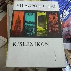 VILAG-POLITIKAI…..德文原版精装