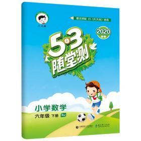 小儿郎 5·3随堂测 小学数学 6年级 下册 RJ 2020 曲一线 编 新华文轩网络书店 正版图书
