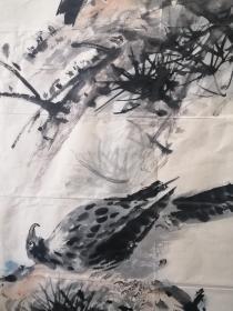王铸九花鸟老软片。