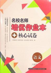 人教版名校名师培优作业本+核心试卷语文六年级下册6年级下册