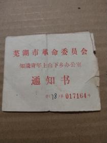芜湖市革命委员会知识青年上山下乡办公室通知书《编号017164》