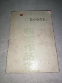 中篇小说选刊(获奖作品集)上册