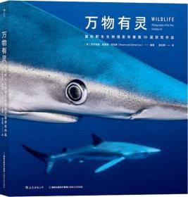 万物有灵:国际野生生物摄影年赛第50届获奖作品