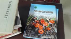 内蒙古赛罕乌拉大型菌物图鉴 精装 一版一印