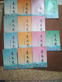青天虎,青岛天后宫灯谜文献,2005-2008年