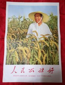 毛主席宣传画2开人民公社好(毛主席戴草帽)