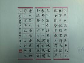 湖北宜昌-书法名家    谢庆平   钢笔书法(硬笔书法)书法 1件 出版作品,出版在 《中国钢笔书法》杂志杂志2005年6期第52页 --保真--见描述