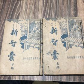 民国旧书巜新智囊》上下册全