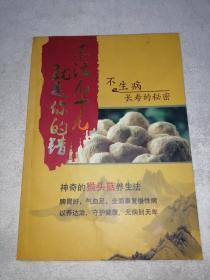 神奇的猴头菇养生法