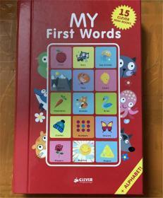 尾单 盒装 低幼纸板书 My First Words: 15 CLEVER Mini-Books Box Set (Clever Mini Board Books) 我的第一句话:15个聪明的迷你书盒子套装(聪明的迷你板书)