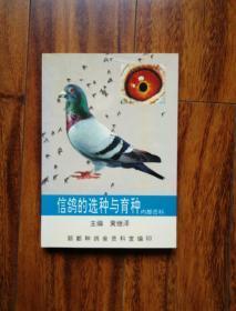 信鸽的选种与育种