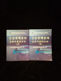 企业管理咨询实务与案例分析  上下两册