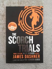 The Scorch Trials 灼烧试验