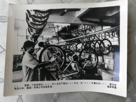 潘家珉摄,已经消亡的早期经济特区深圳自行车装配线照片