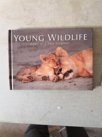 YOUNC WILDLIFE