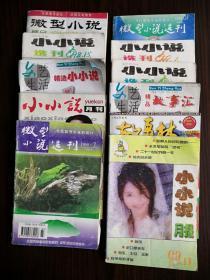 小小说杂志(10本)