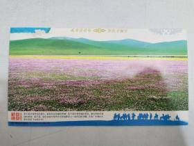 全新邮资明信片——2011年岁次辛卯年花海