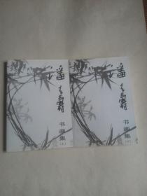 潘天寿书画集(上下册)