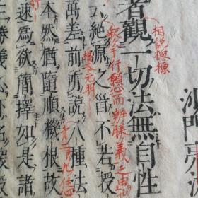 日本回流《菩提心论教相记下》,红黑两种颜色批注。有虫蛀如图。批注书法上乘。