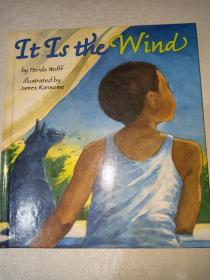 It Is the Wind