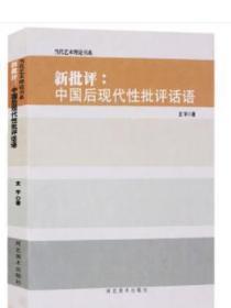 正版 当代艺术理论书系 新批评:中国后现代性批评话语 河北美术出版社