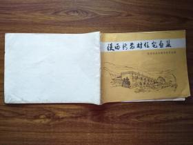 陕西新农村住宅画集